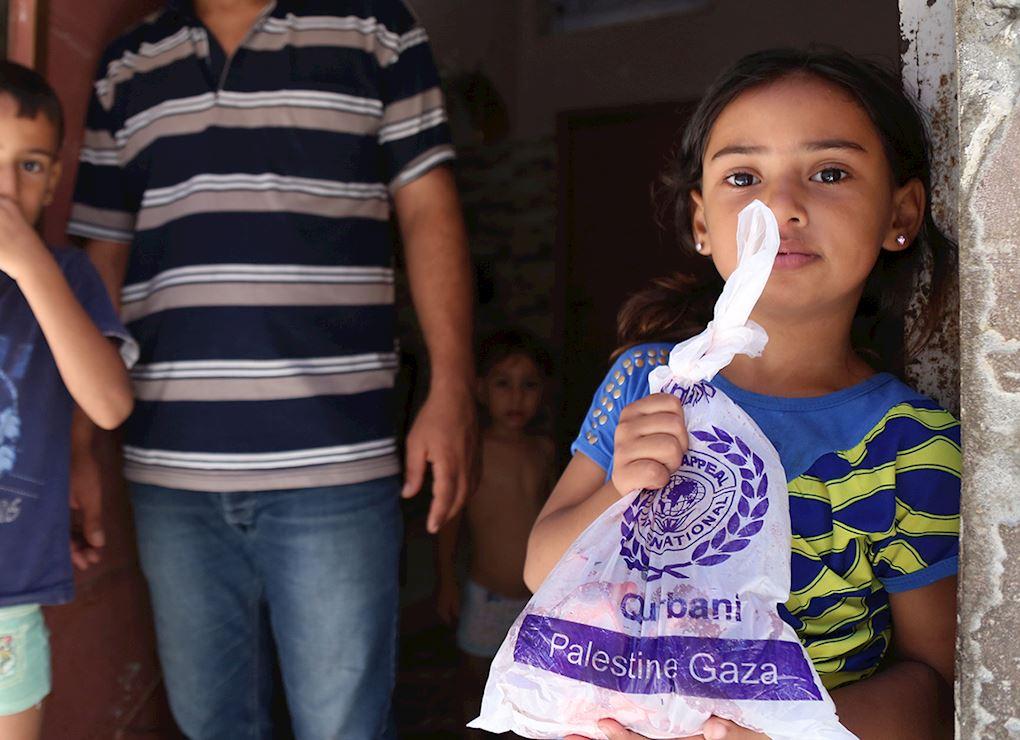 Qurbani - Palestine (Frozen)