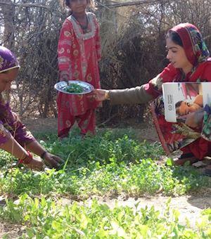 Kitchen Gardening Projects