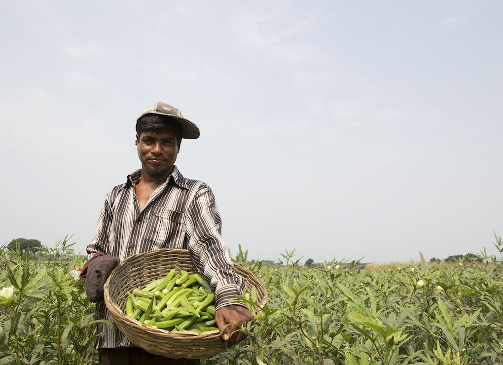 Pakistan Hydroponic Farm Fund
