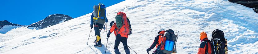 People trekking up the mountain
